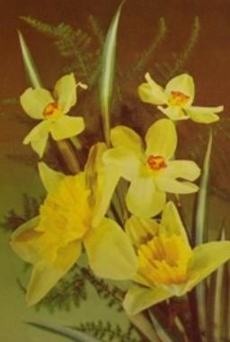 Atvirukas su gėlėmis,1989