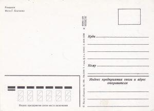 Atvirukas, 1981