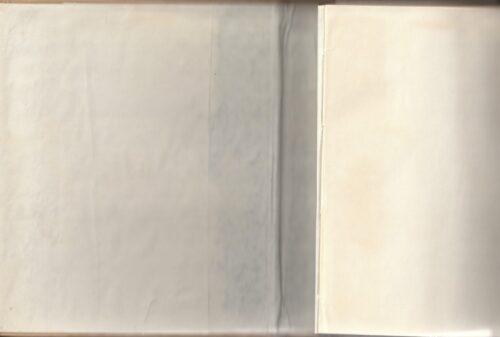 Užrašų knygutė odiniu viršeliu