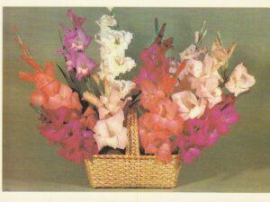 Atvirukas su gėlėmis, 1984