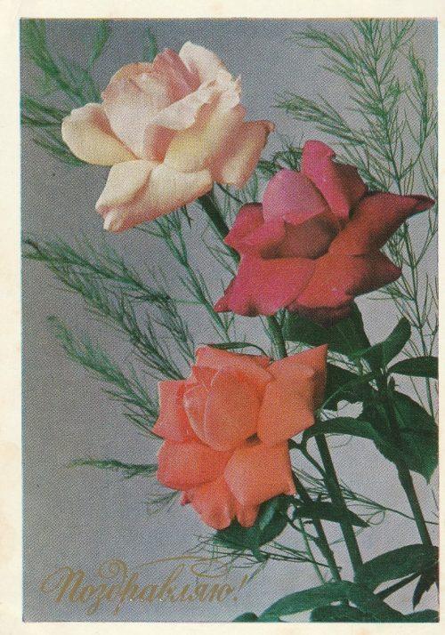 """Atvirukas """"Sveikinu"""", 1977"""